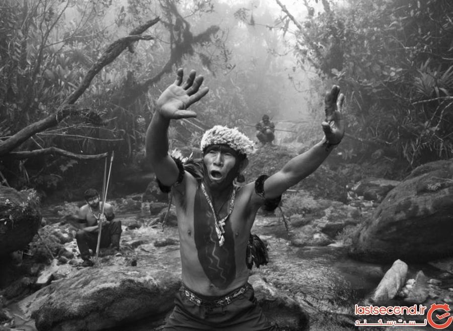 قبیله یانومامی