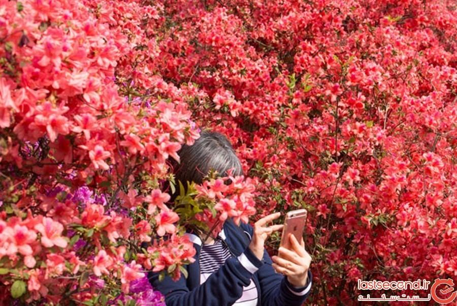 Spring-Is-onthe-Way-9.jpg