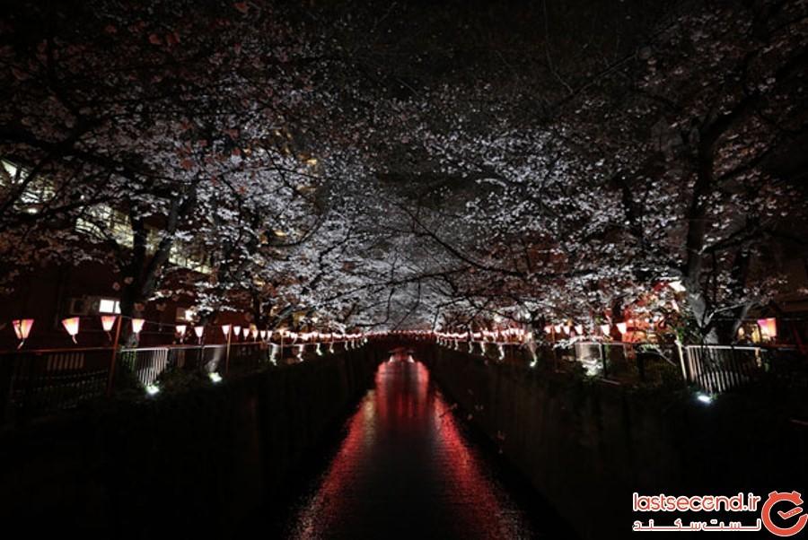 Spring-Is-onthe-Way-3.jpg