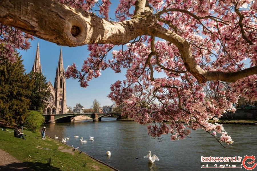 Spring-Is-onthe-Way-15.jpg