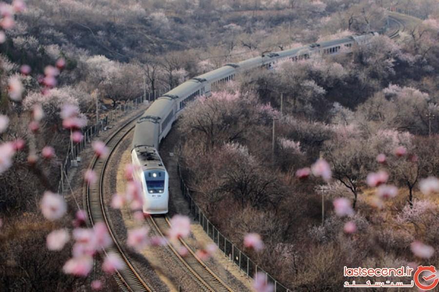 Spring-Is-onthe-Way-6.jpg