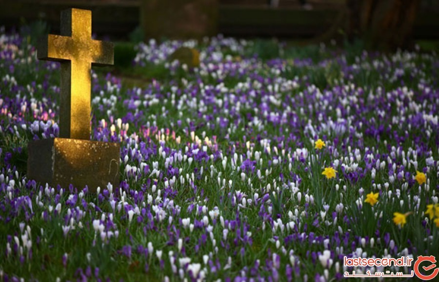 Spring-Is-onthe-Way-11.jpg