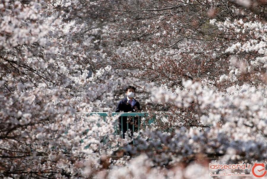 Spring-Is-onthe-Way-18.jpg