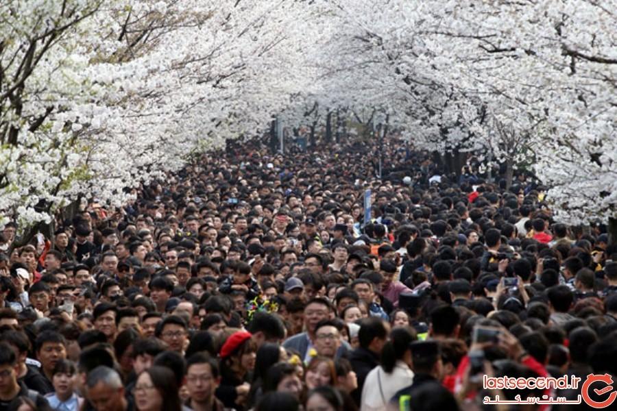 Spring-Is-onthe-Way-22.jpg