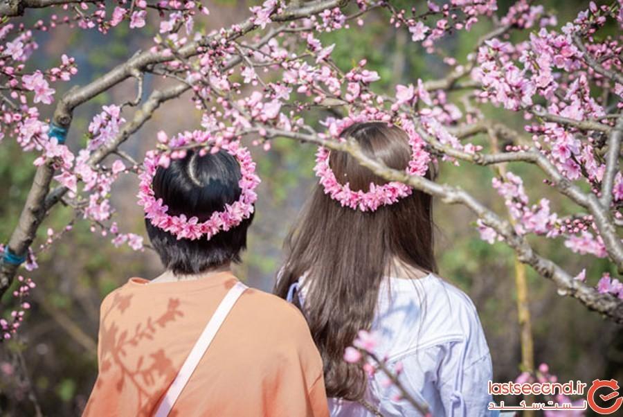 Spring-Is-onthe-Way-16.jpg