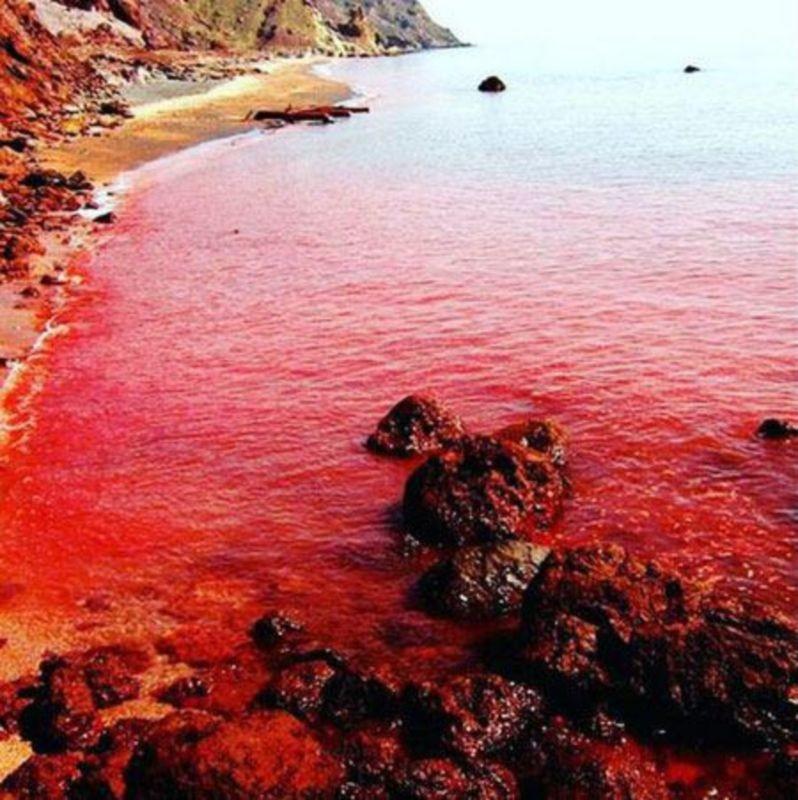 Red Beach Hormoz (1).jpg