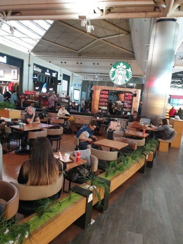 Starbucks Cafe (1).jpg