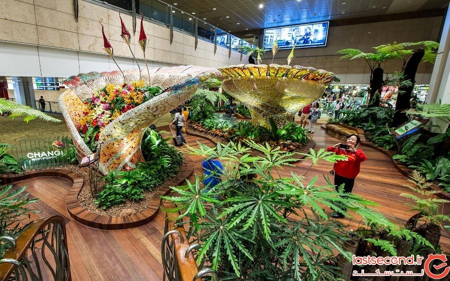 فرودگاه Changi سنگاپور