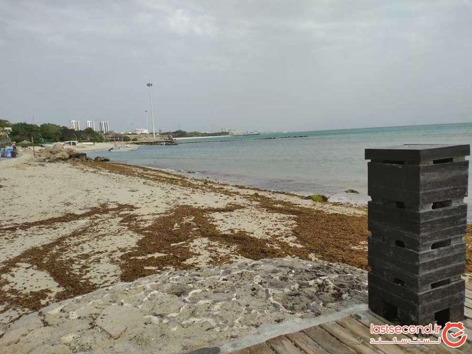 ساحل مرجان (3).jpg