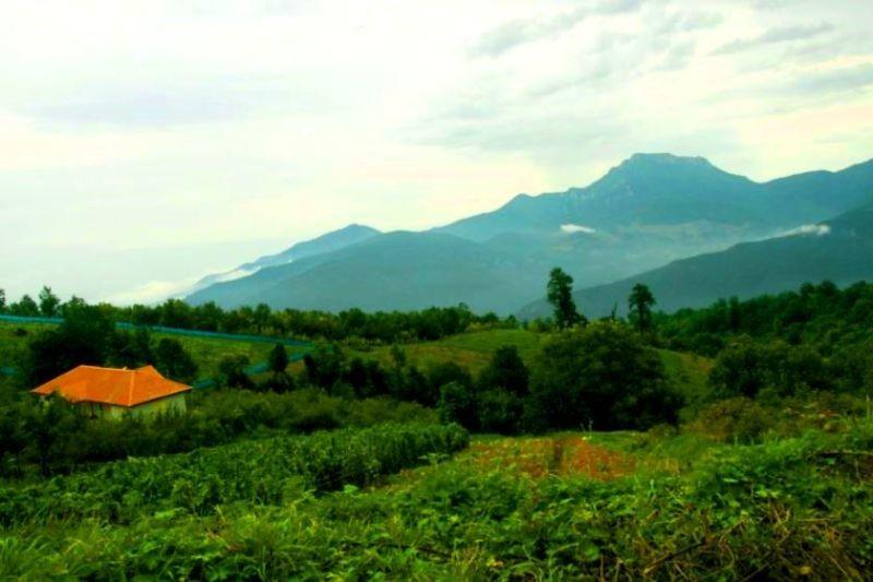 Afratakhteh Village (1).jpg