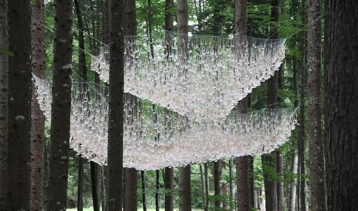 لوستر عجیبی که آب باران را در جنگلی در ایتالیا جمع میکند