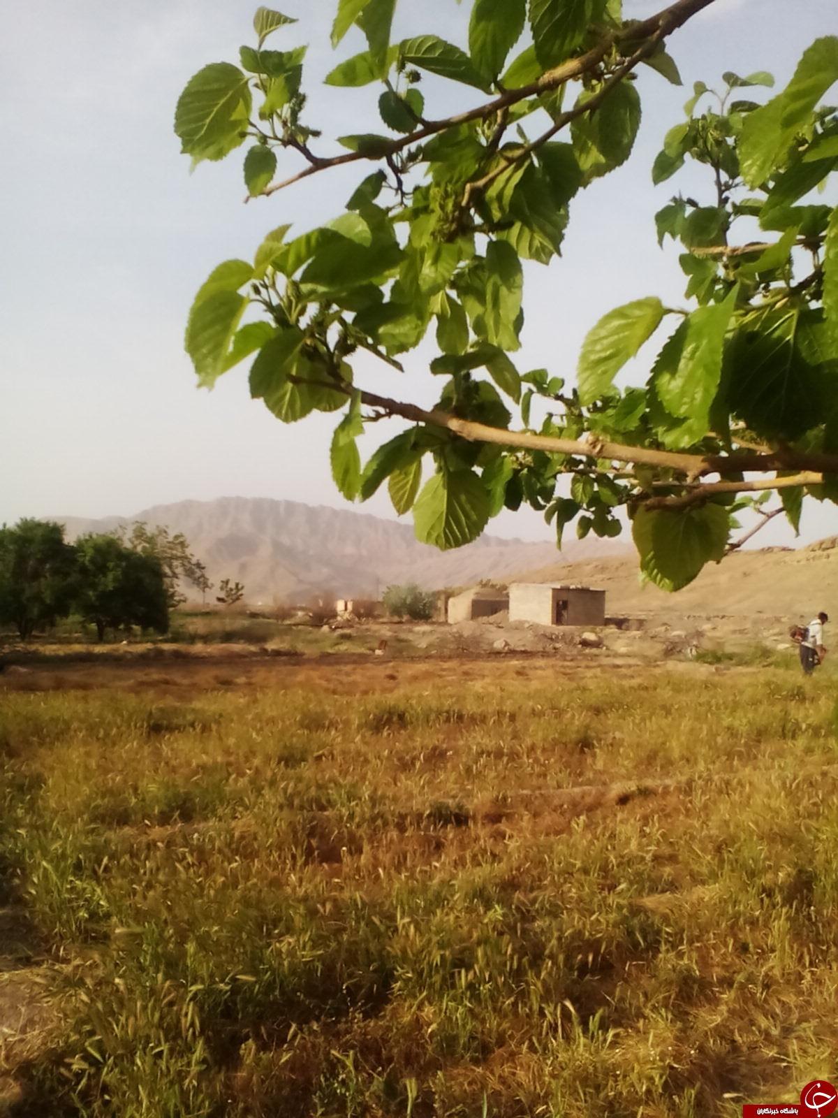 Tarz Village (2).jpg