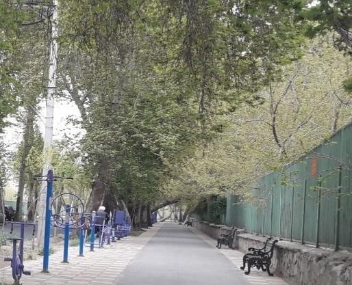 خیابان دانشکده کرج