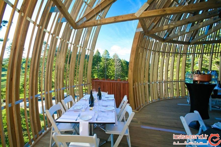 خانه درختی رِد وودز (Redwoods Treehouse) - نیوزیلند