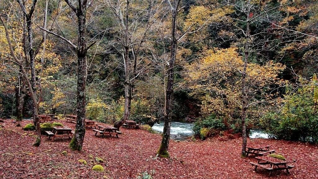 پارک ملی متیرالا