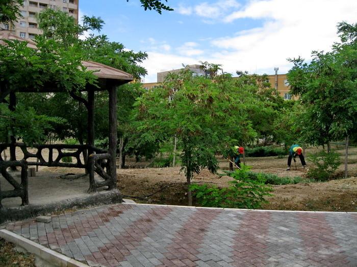 Negin Park