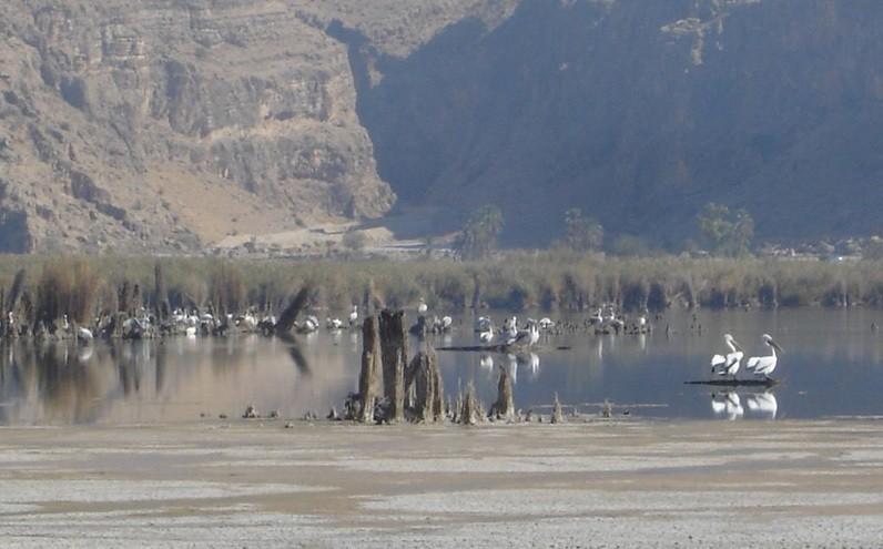 Parishan Lake (4).jpg