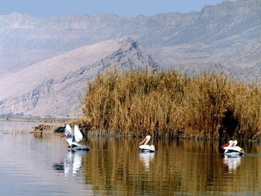 Parishan Lake (1).jpg
