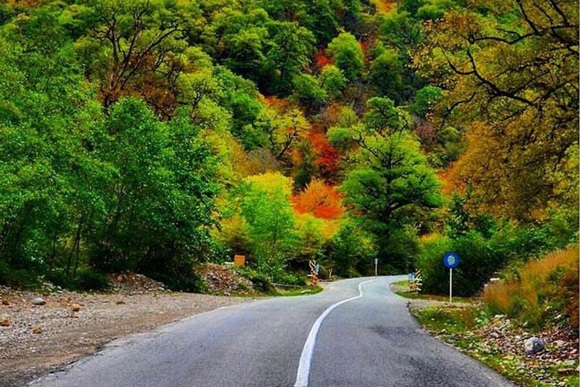 Tuskestan Forest (2).jpg