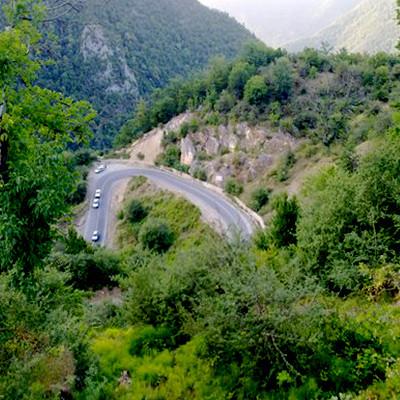 Tuskestan Forest (1).jpg