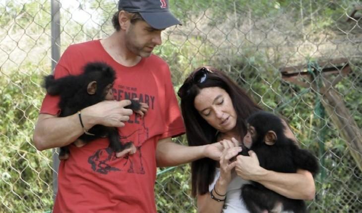 دیدار با زوجی که 34 شامپانزه ی یتیم را پرورش میدهند
