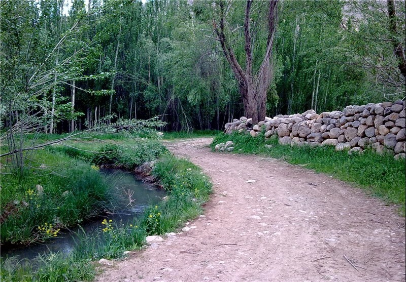 روستای ونایی