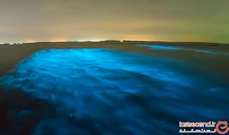 راز دریای شیری