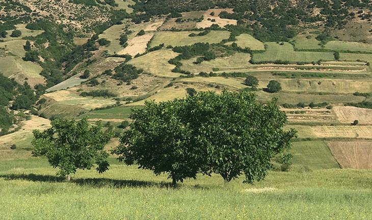 روستای ده چناشک، یکی از زیباترین روستاهای کوهستانی گلستان