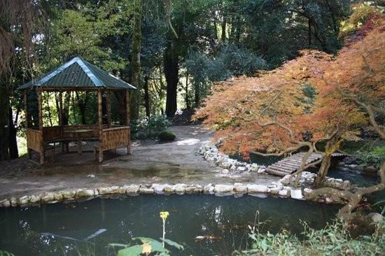 Japanese Garden Batumi (2).jpg