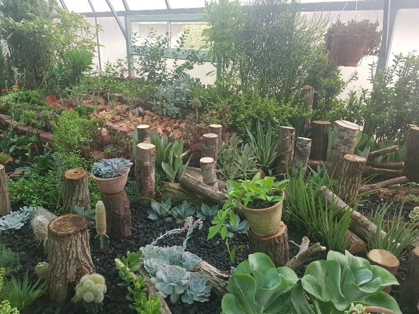 گلخانه مزرعه قوها