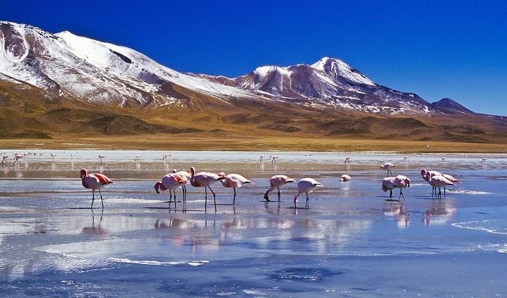 چشمانداز رنگینکمانی سورئال بولیوی که در نوع خود یگانه است