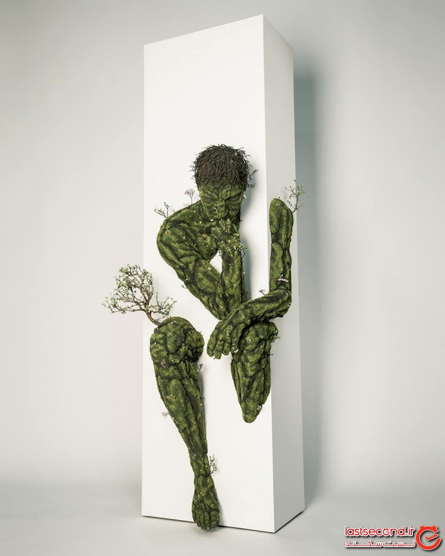 مجسمههای گیاهی سورئالی که باعث میشوند فکر کنید باغچهتان زنده شده است