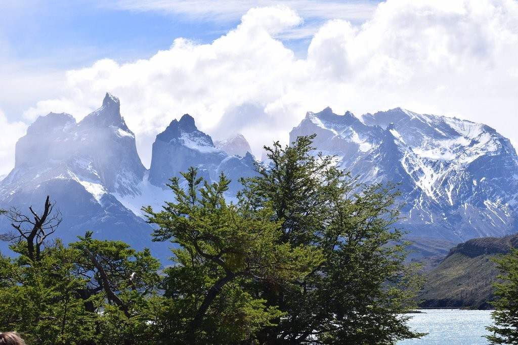 Torres del Paine National Park (1).jpg