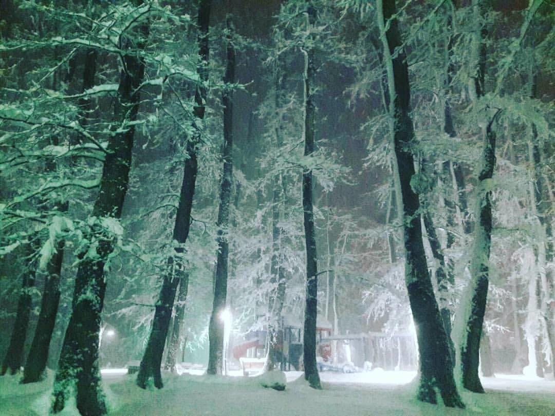 Falakdeh Forest Park