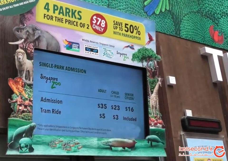 zoo (3).jpg
