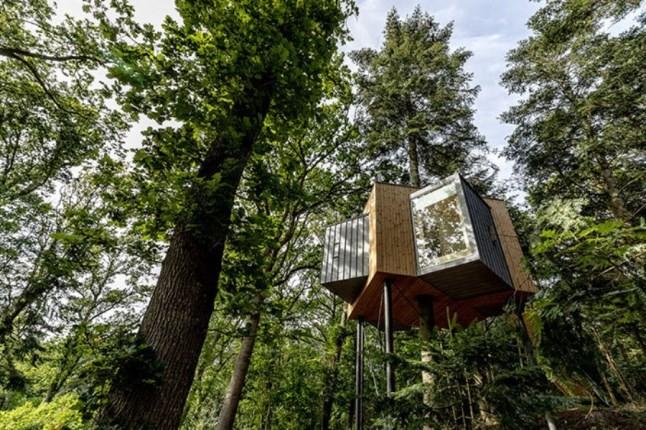 هتلی به سبک خانه درختی در دانمارک که مخصوص ماجراجوهاست