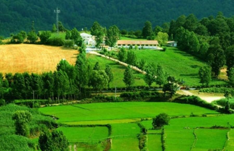 سیکاء، روستای متبرک شهرستان نکا
