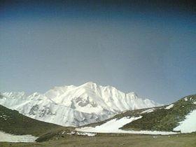 قالی کوه