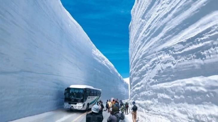 بام ژاپن، برفیترین جاده جهان که همیشه سفید پوش است
