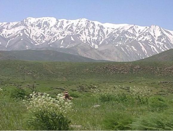 Ghali Mount (2).jpg