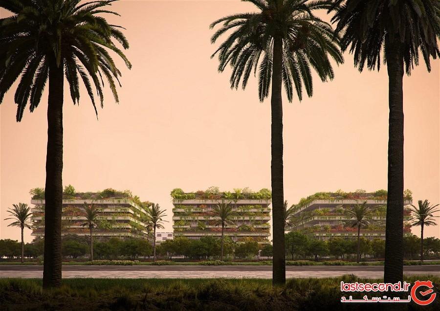 نخستین جنگل عمودی آفریقا در مصر