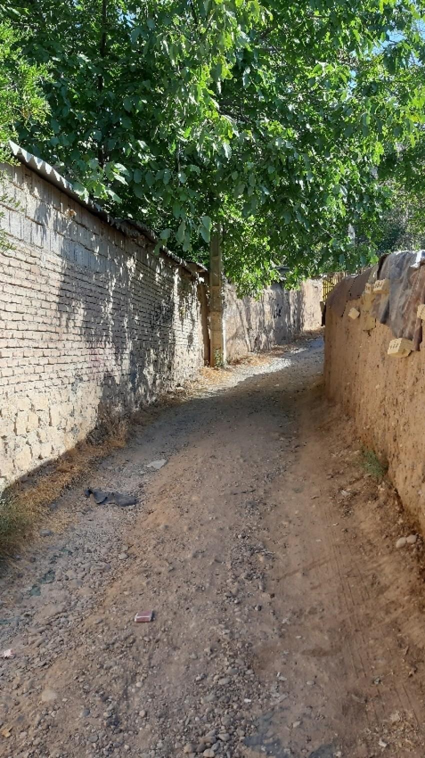 Chamran Boulevard Gardens Alley (2).jpeg