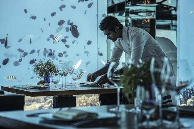 رستوران چندوجهی زیرآب که شما را دعوت بهصرف غذا می کند!