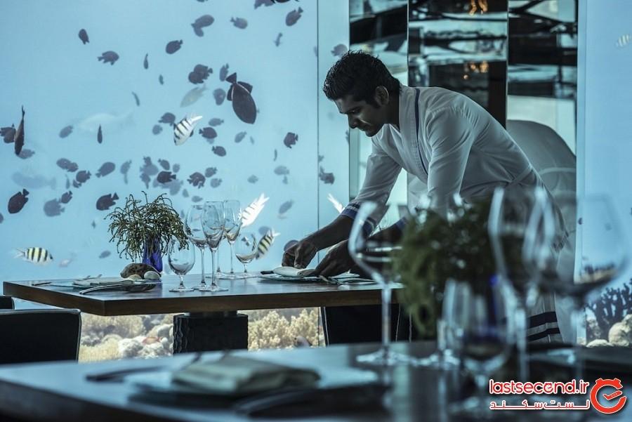 رستوران چندوجهی زیرآب که شما را دعوت بهصرف غذا در نزدیکی زندگی دریایی تماشایی میکند