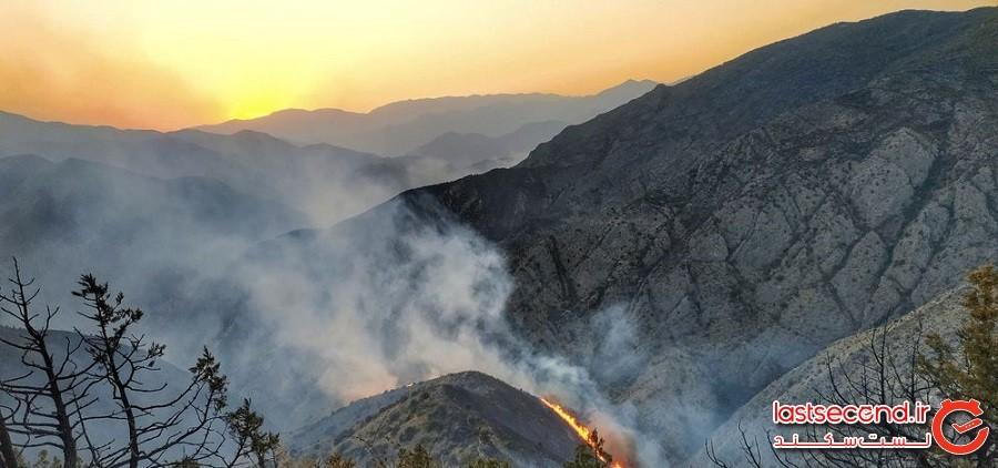 آتش در ریههای ایران و جهان