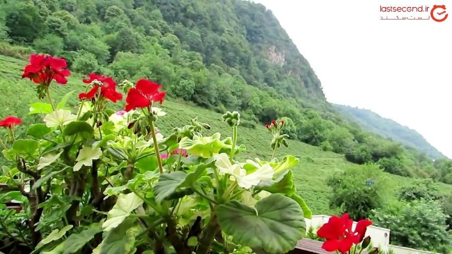 لاهیجان، پر از رمز و زیبایی