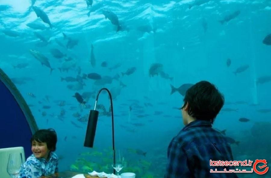 رستوران زیرآبی ایتها در مالدیو (Ithaa Undersea Restaurant in the Maldives)
