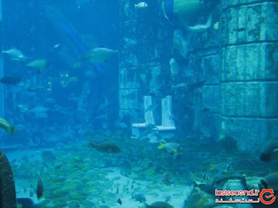 هتل تقلیدی از آتلانتیس در دبی (Atlantis as Re-Created in Dubai)
