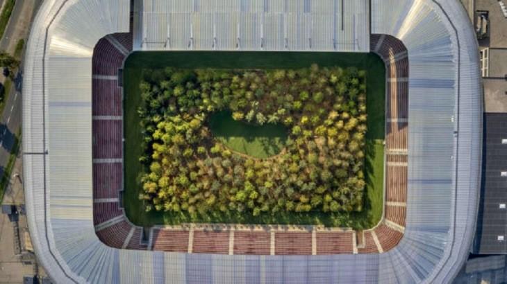 جنگلی که در اتریش، وسط یک استادیوم فوتبال روییده است!