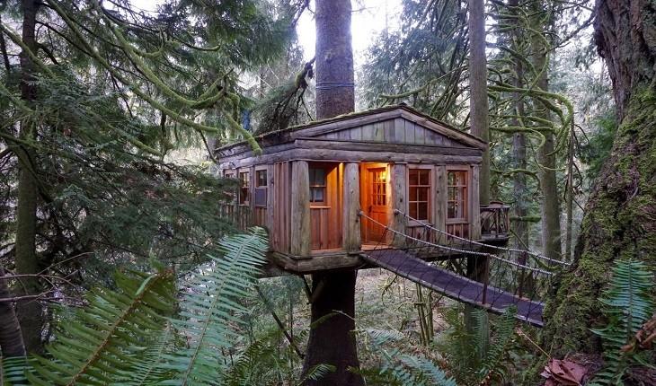 عجیب ترین خانه های درختی جهان در کدام کشورها قرار دارند؟